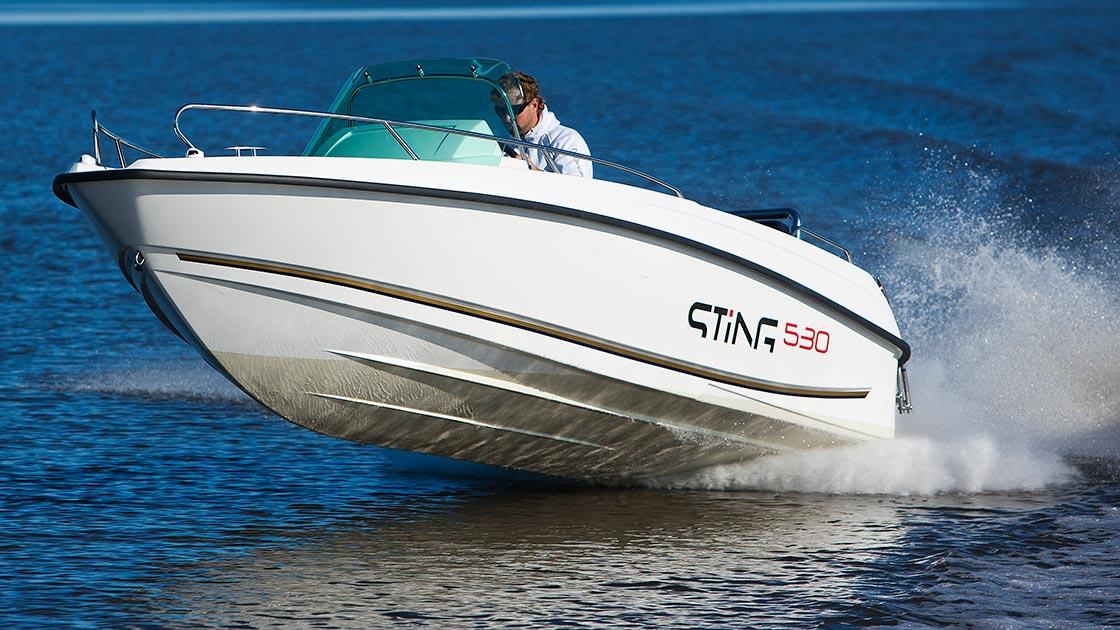 Ideální motorový člun na dovolenou na moři, STiNG 530 s lodním motorem Evinrude E-TEC E90 DPGL
